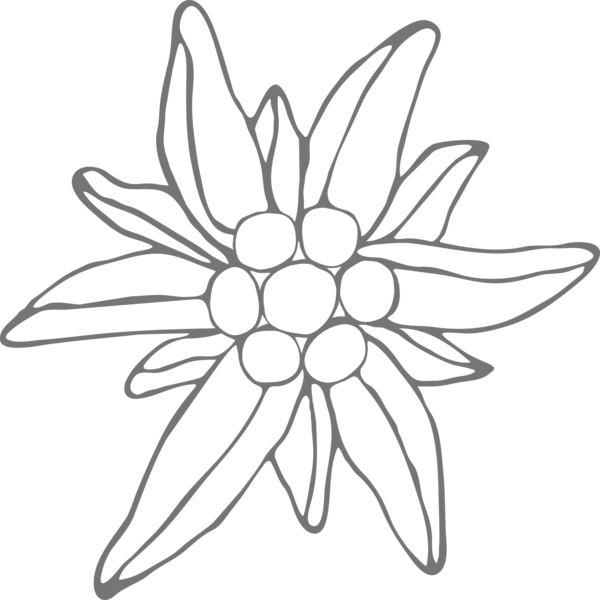 Edelweiss at getdrawings com. Handcuffs clipart easy drawing