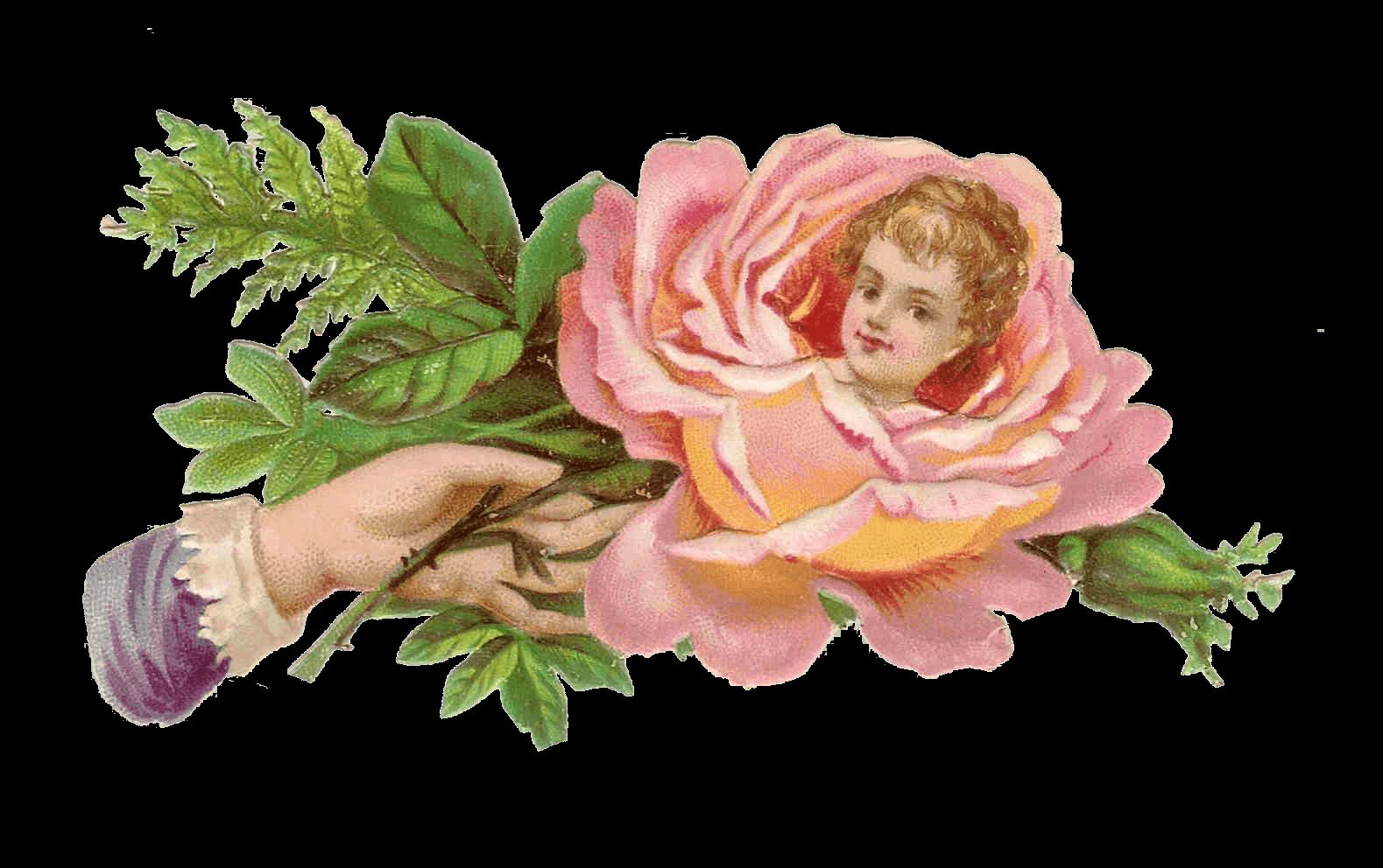 Child victorian hand transparent. Hands clipart flower