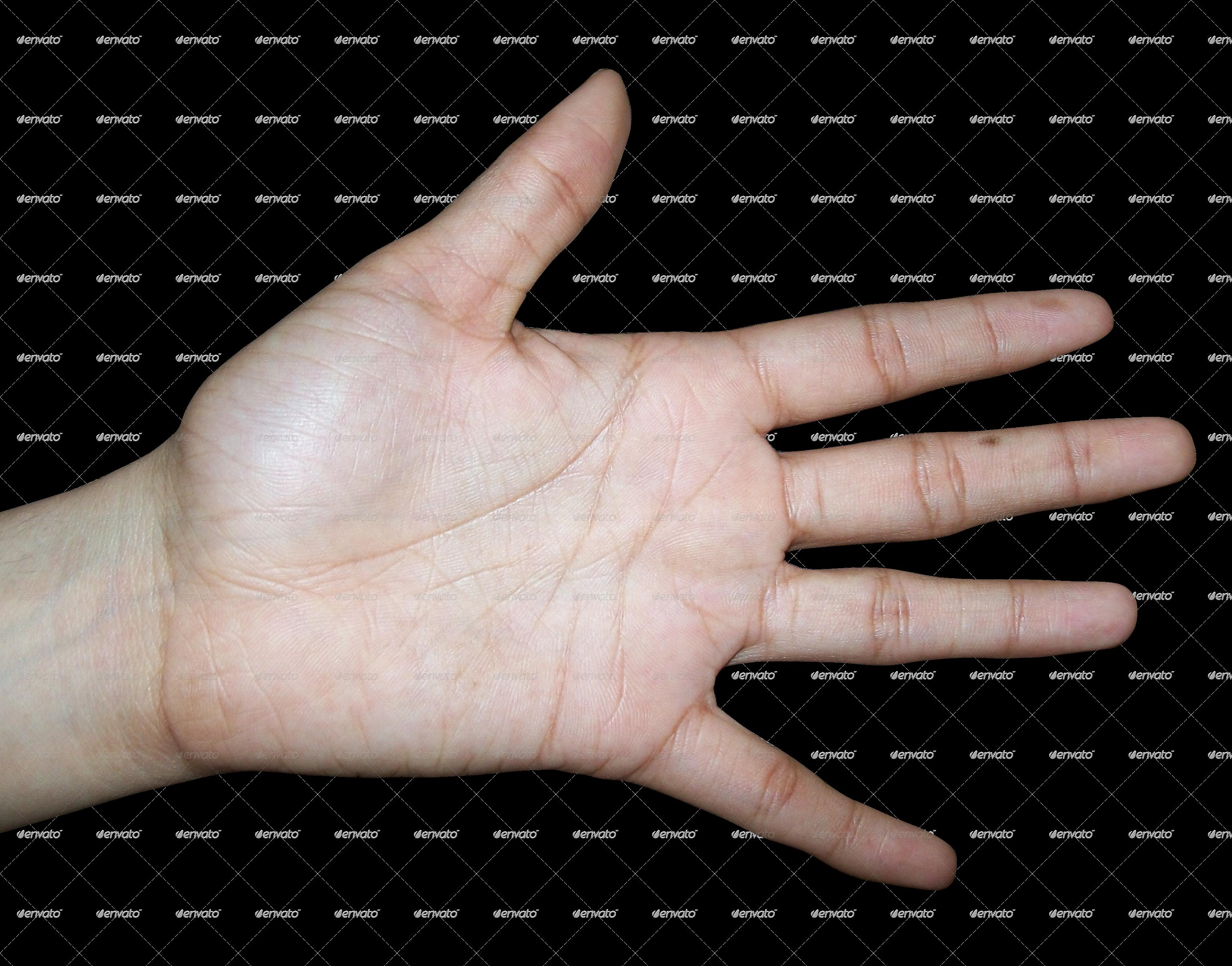 Hands clipart human hand. Textures by chandank docean