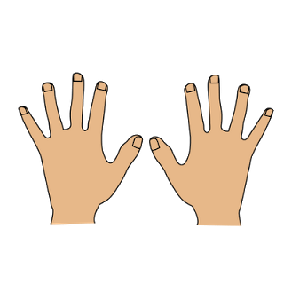 Only kid clipartix. Clipart hands