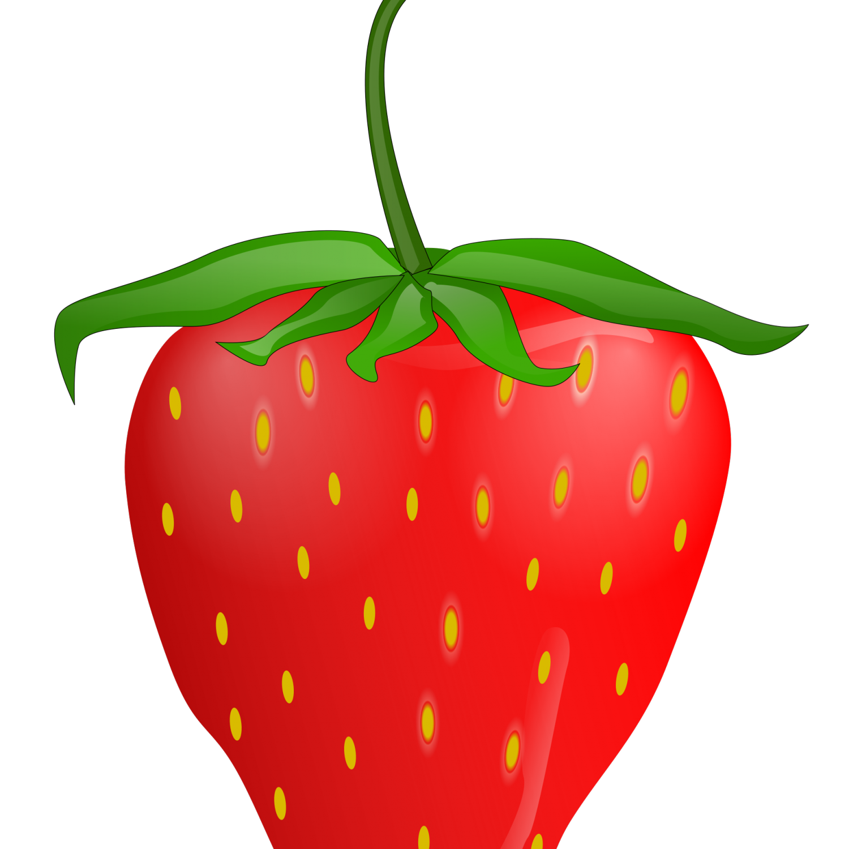 Strawberry plant clip art. Strawberries clipart bush