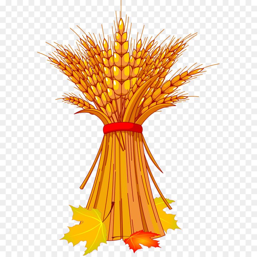 Family tree background autumn. Wheat clipart wheat harvest