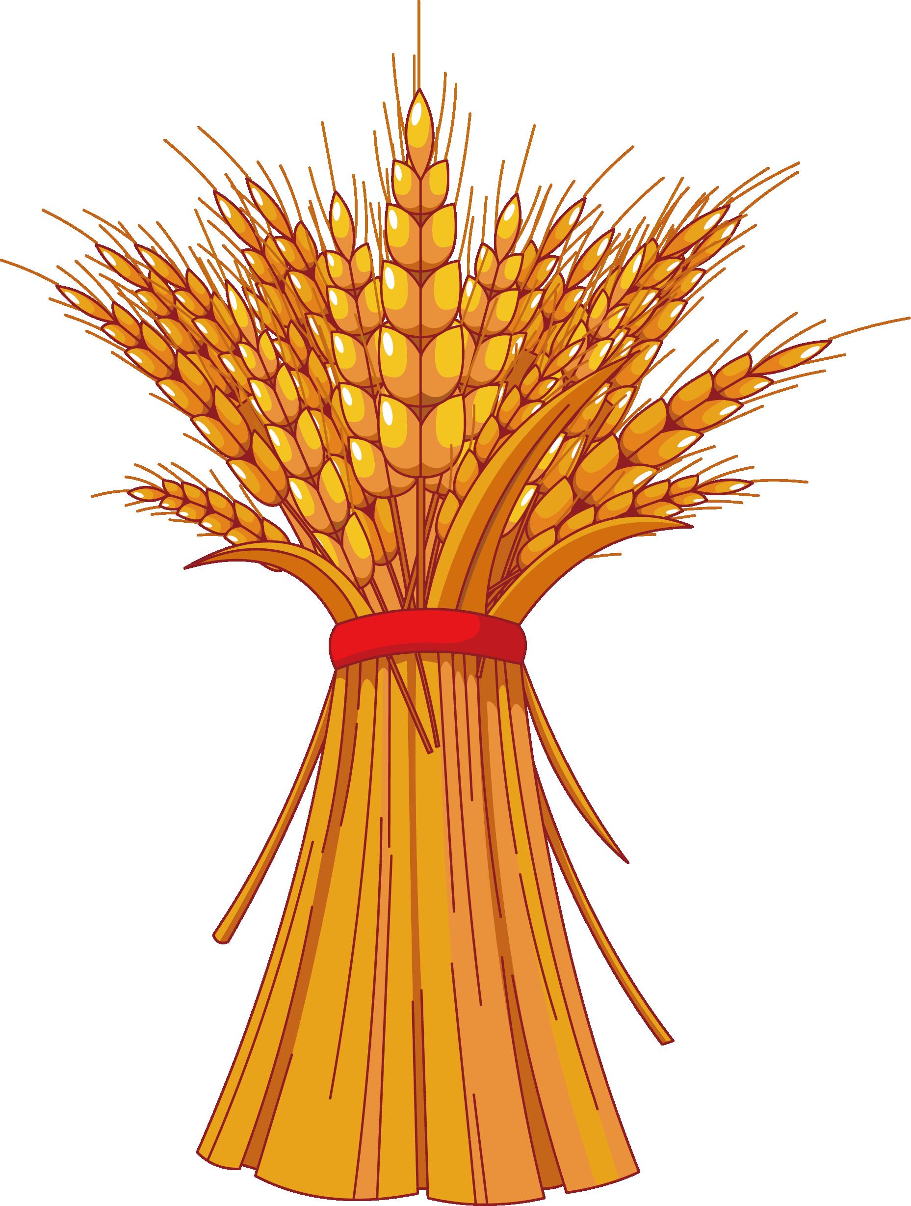 Harvest clipart decoration.  huge freebie download