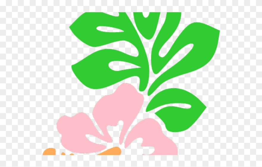 Hawaiian day flower png. Hawaii clipart cartoon