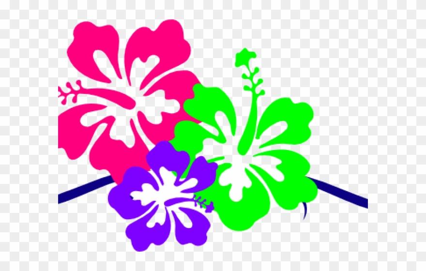 Small border design . Hawaiian clipart hibiscus