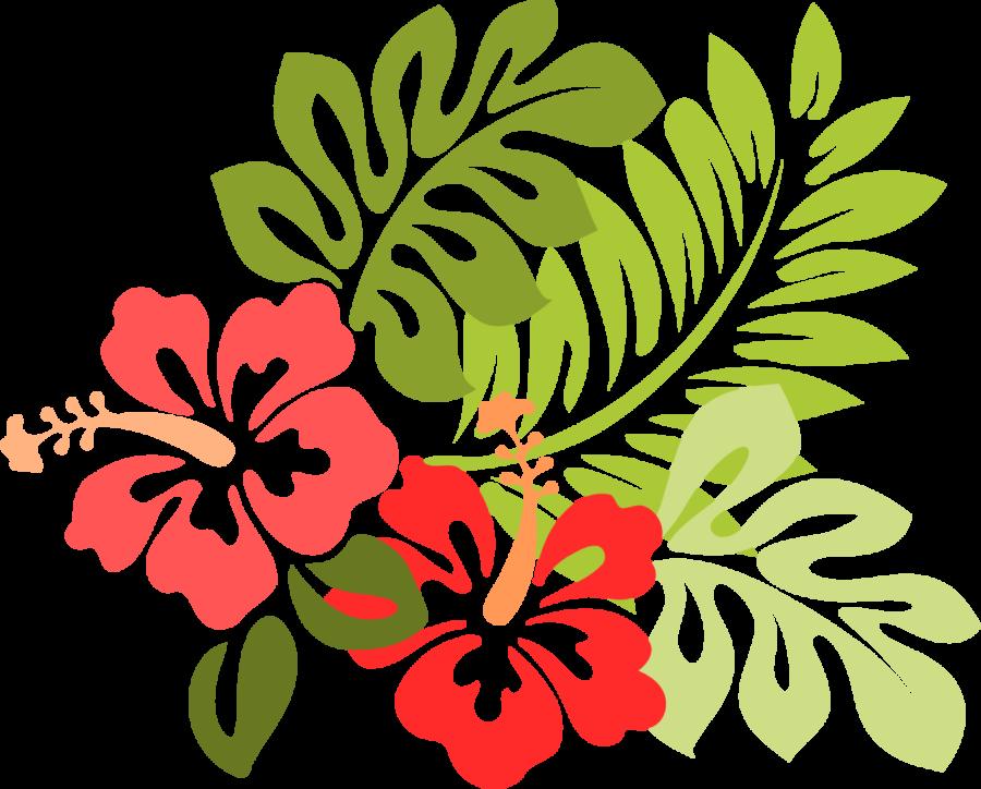 Hawaii hawaiian bbq
