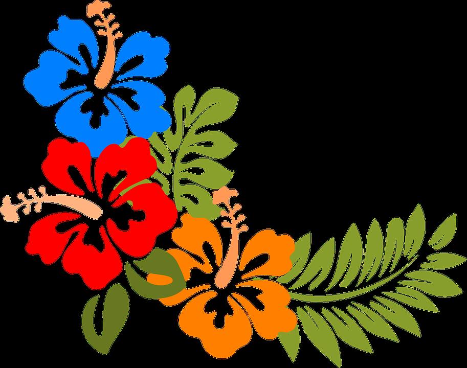 Hawaii clipart hawaiian ukulele. Imagen gratis en pixabay
