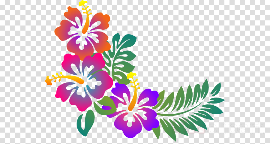 Luau clipart hawaiian floral. Flower line art design
