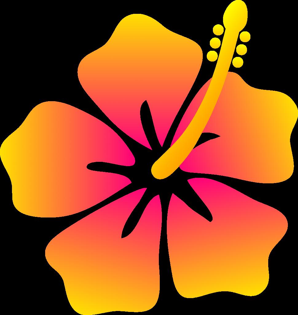 Hawaiian clipart animated. Orange flower free animations