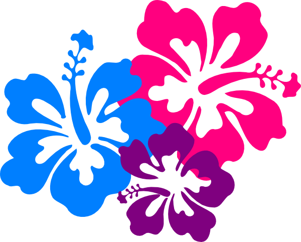Free flowers transparent download. Hawaiian flower png