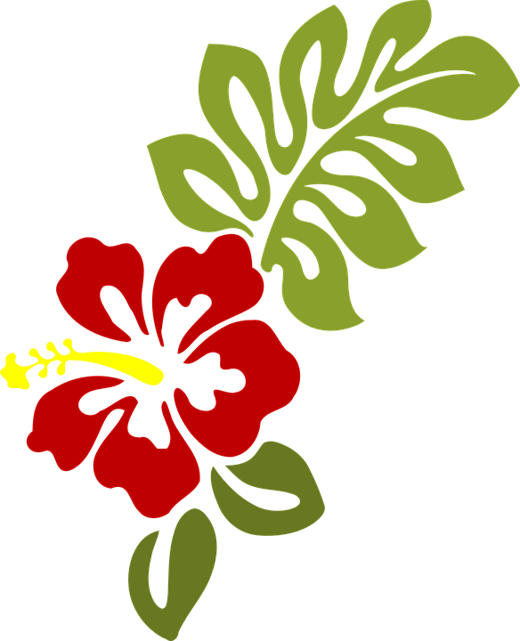 Hawaii flowers cartoon shop. Hawaiian clipart hawaiian attire