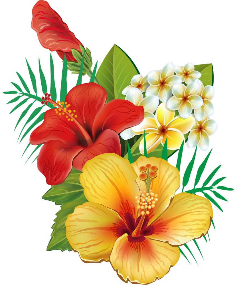 png pinterest tattoo. Hawaiian clipart hawaiian floral