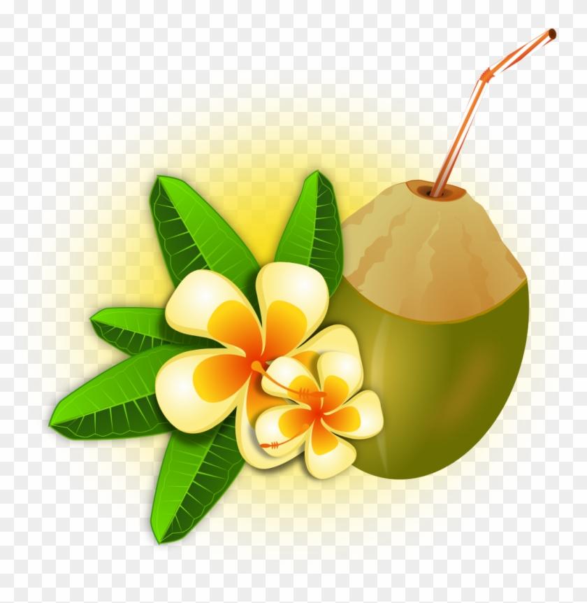Hawaii tropical coconut cocktail. Hawaiian clipart hawaiian food