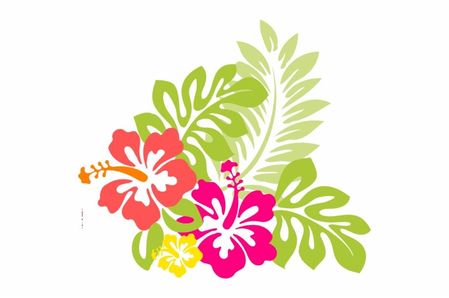 Hawaiian clipart hawiian. Flowers from hawaii the
