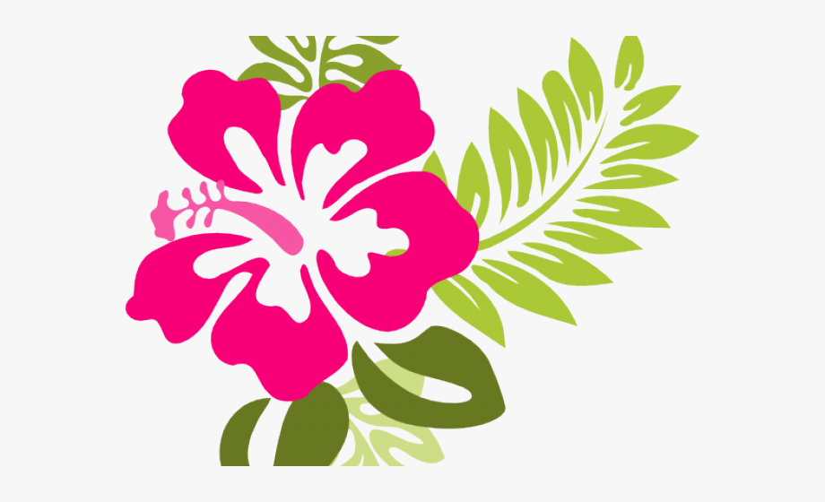 Hibiscus clipart hybiscus. Flowers borders pink flower
