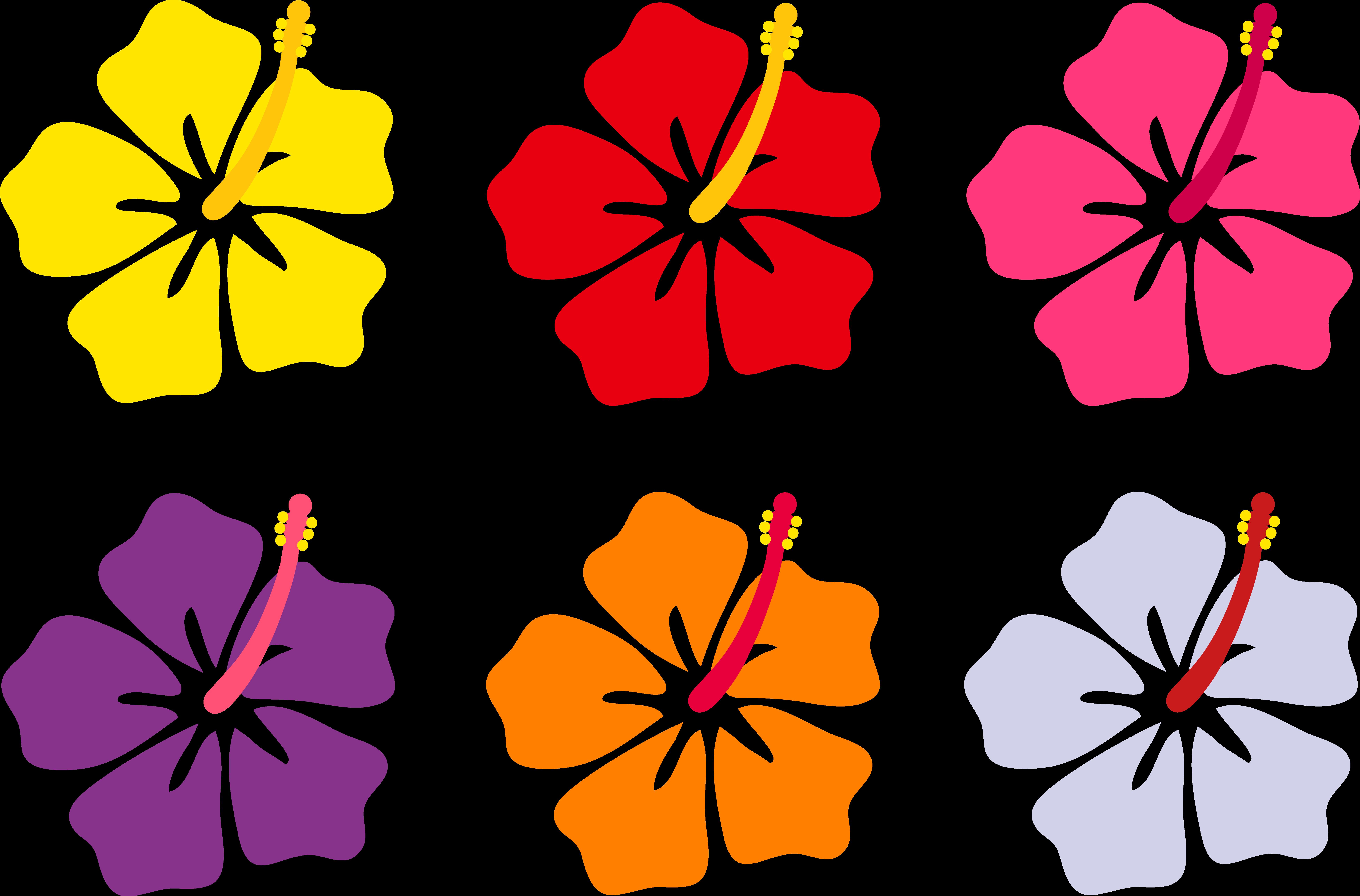 Yellow hawaiian flower images. Plants clipart gumamela