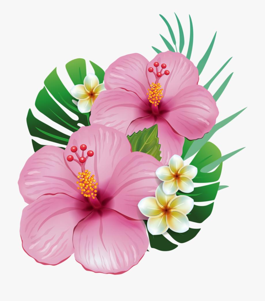 Aloha tropical flower flor. Hawaiian clipart moana