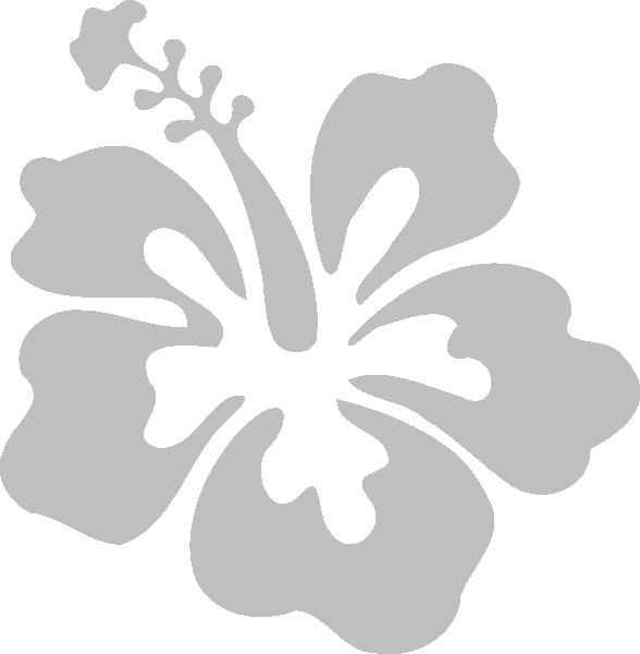 Hibiscus Clipart Gumamela Flower Hibiscus Gumamela Flower Transparent Free For Download On Webstockreview 2020