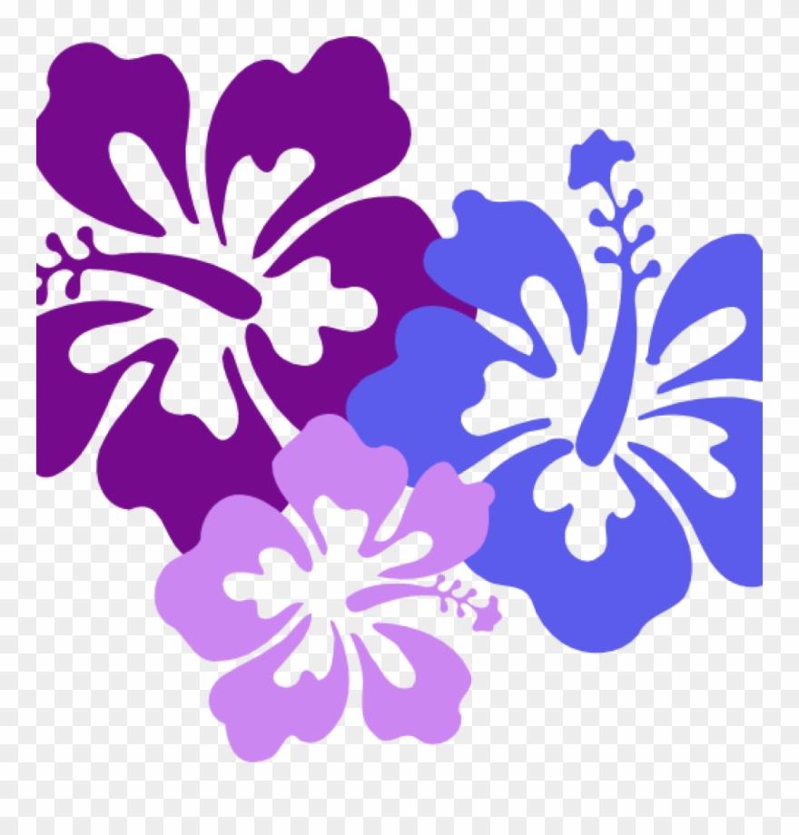 Hawaiian clipart purple hawaiian flower. Flowers clip art
