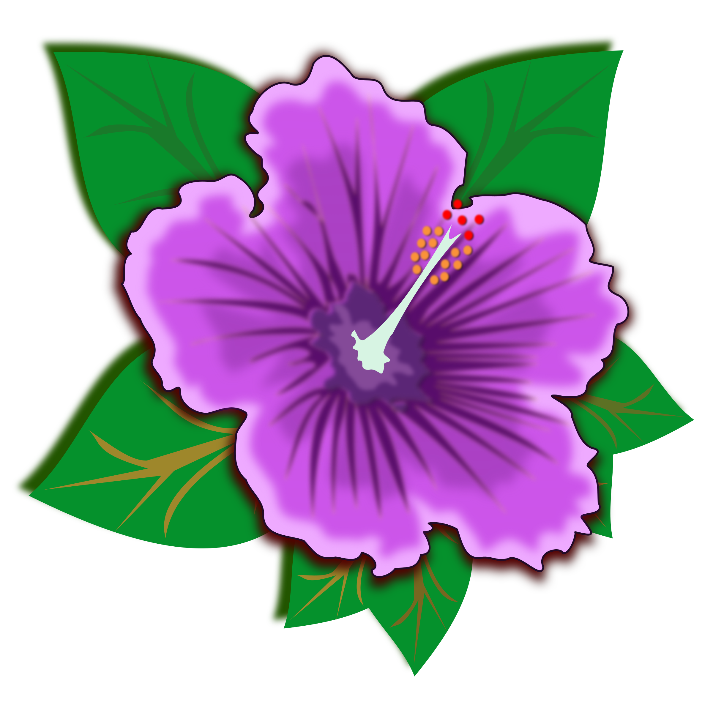 . Hibiscus clipart flower real