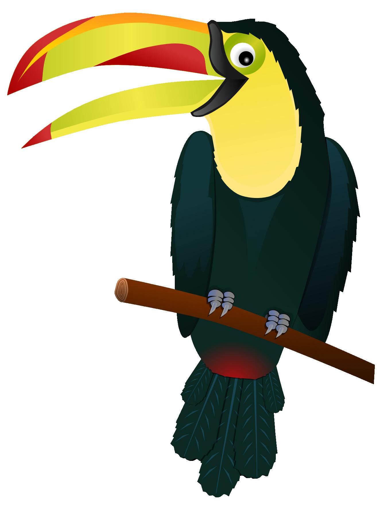 collection of bird. Toucan clipart christmas