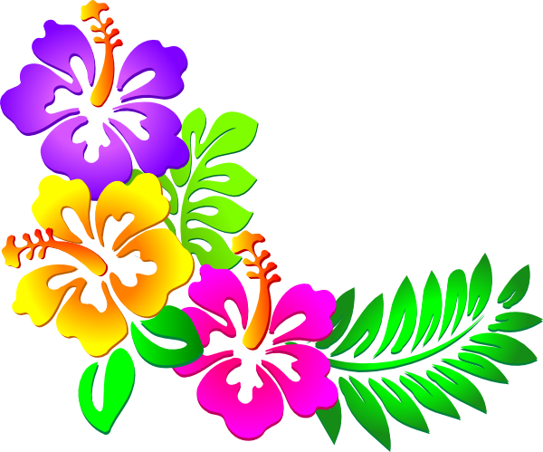 Clip art tropical plants. Hawaiian flower png
