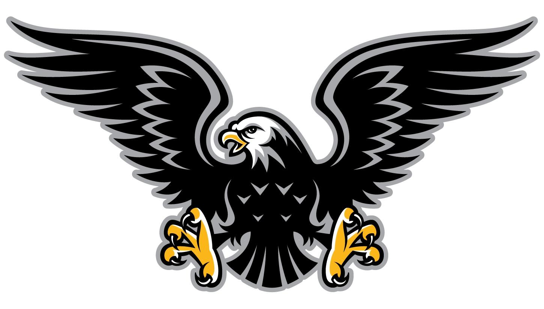 Hawk clipart. Fresh design digital collection
