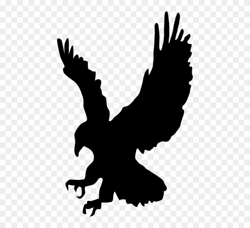 Eagle clipart hawk. Flying cliparts buy clip