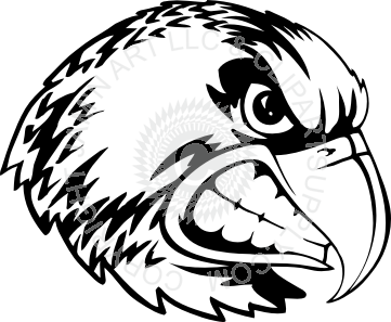 Hawk clipart angry. Looking to the side
