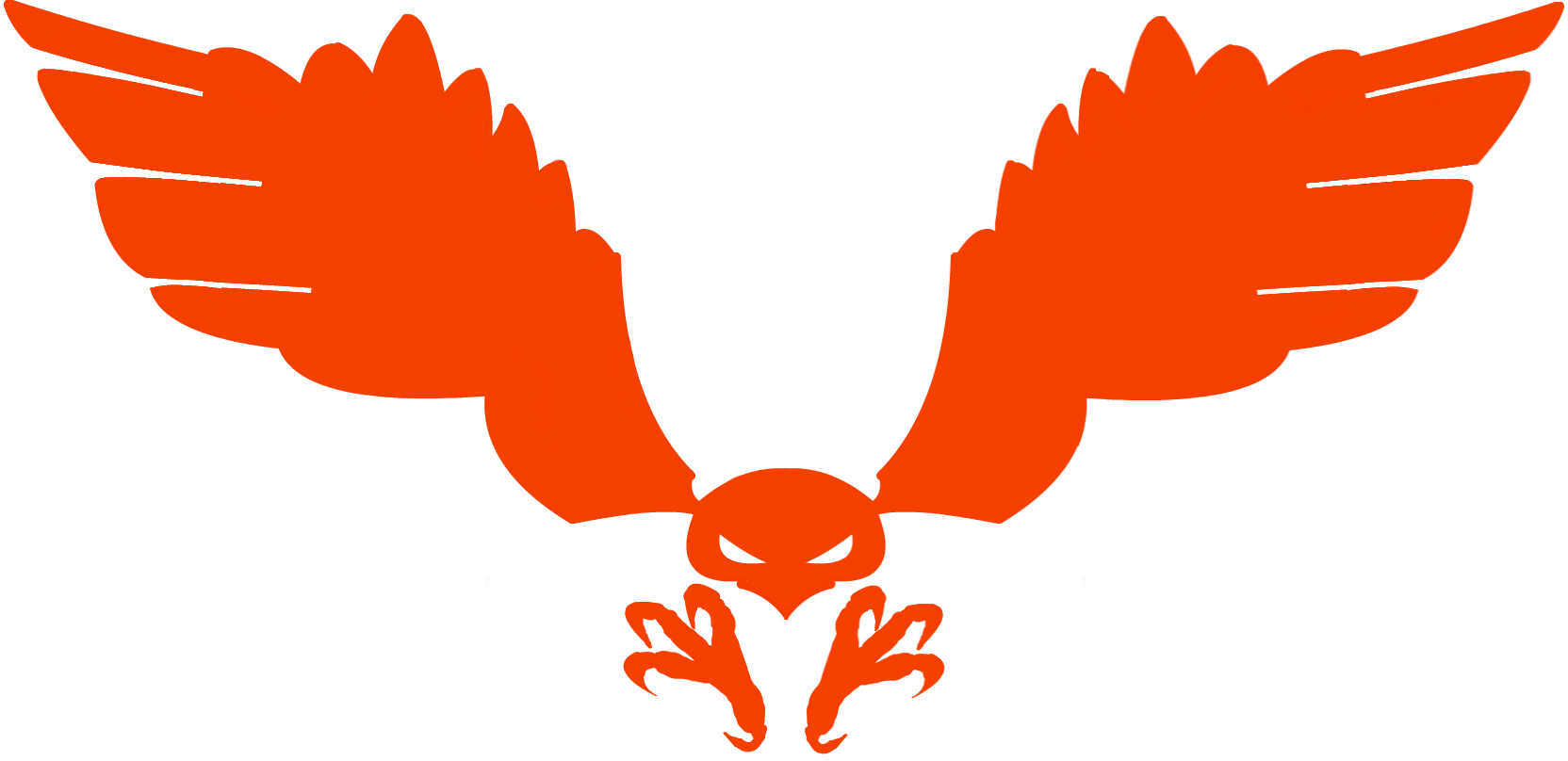 Clan of the arrow. Wing clipart hawk