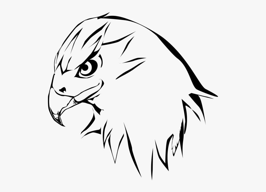 Hawk clipart hawk harris. Head outline free