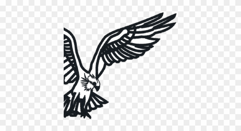 Transparent s free . Hawk clipart hawk harris