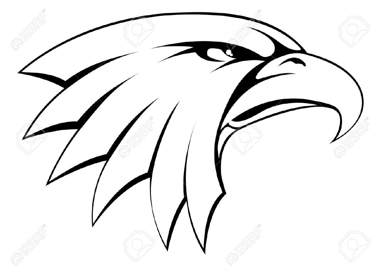 Collection of free halk. Hawk clipart hawk head
