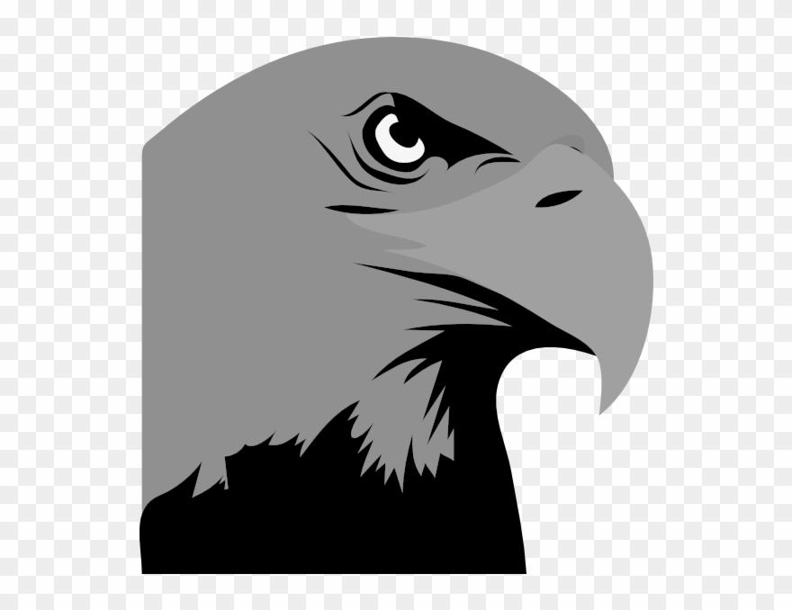 Hawk clipart hawk head. Png black and white