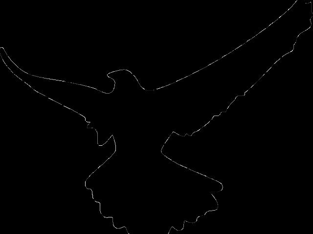 hawk clipart logo