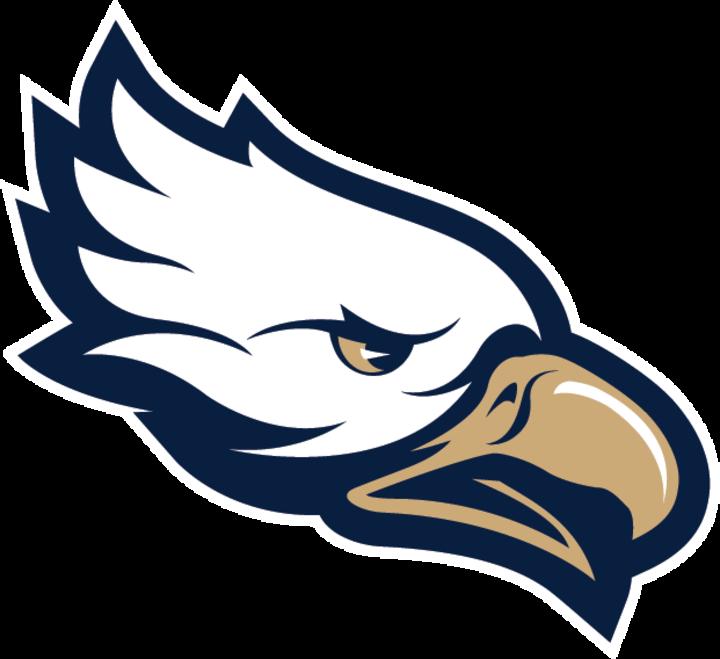 Pensacola hs scoreboard news. Hawk clipart skyview