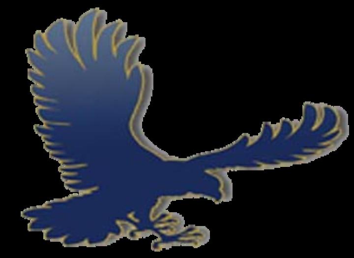 Hawk clipart skyview. Utah high school scores