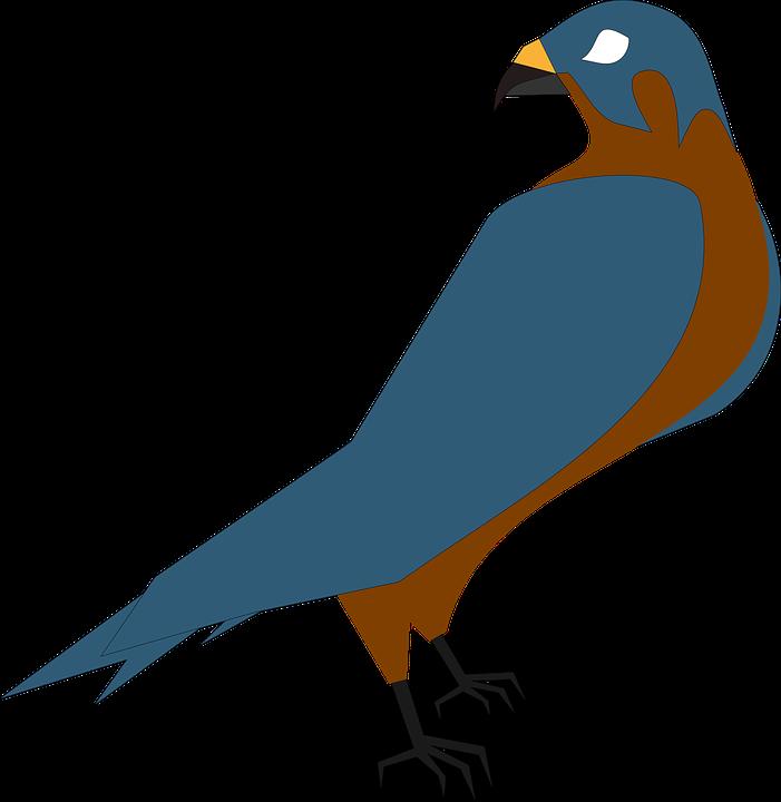 Hawk clipart skyview. Prey group free vector