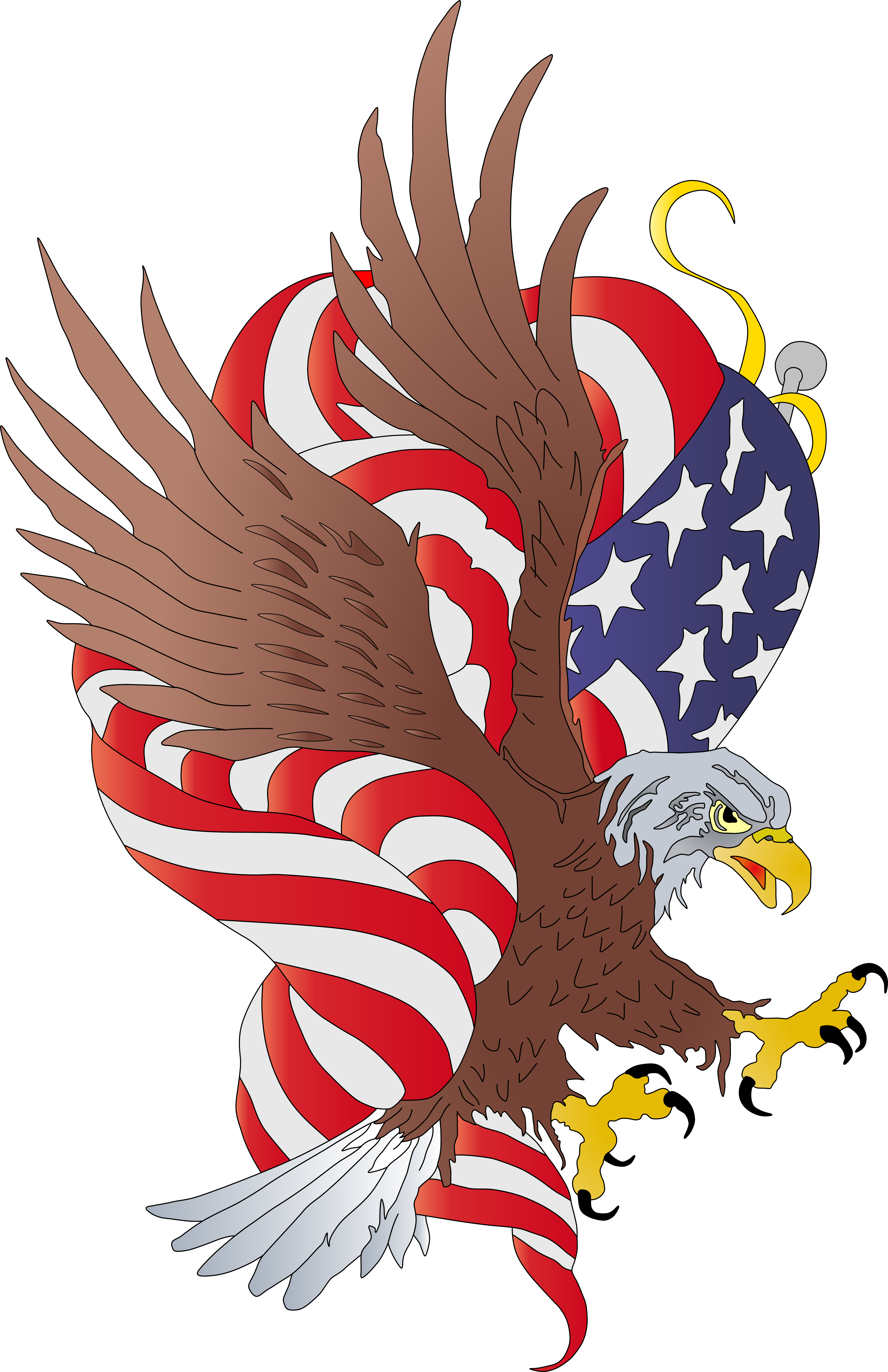 American plumbing licensed minnesota. Hawk clipart strong eagle