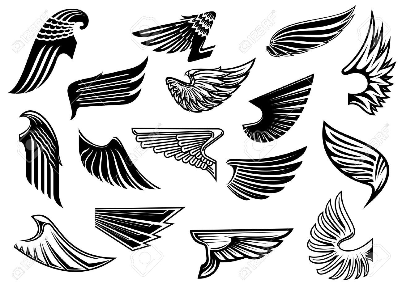 Wing clipart abstract. Pin on hawks dragons