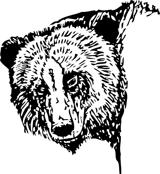 Head clipart black bear. Clip art at clker