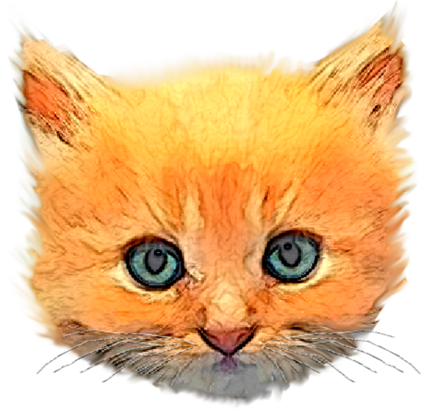Kitten free images at. Head clipart kitty