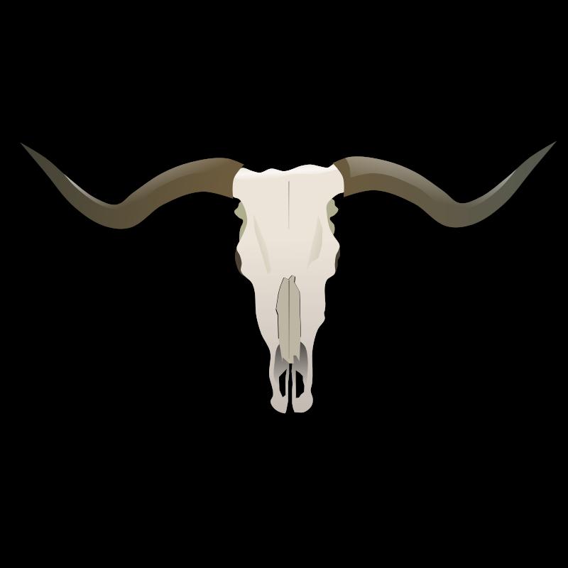 Bull skull clip art. Longhorn clipart tribal