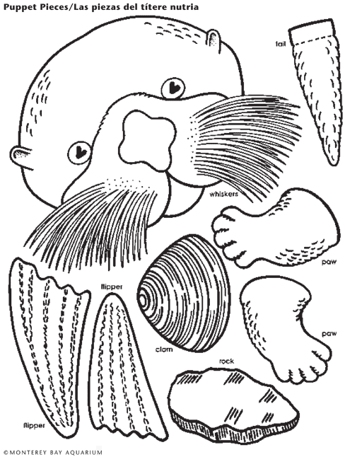 Seal clipart sea otter. Lunch bag puppet craft