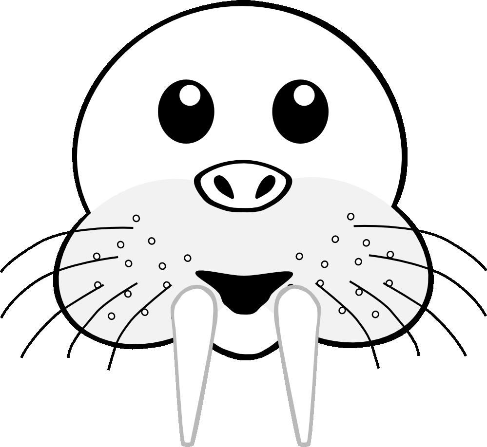 Clipartist net clip art. Head clipart walrus