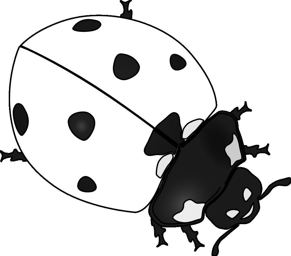 Ladybug clipart black and white. Drawing panda free images