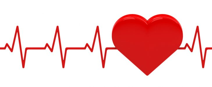 Heartbeat clipart heart rhythm. Free download best on