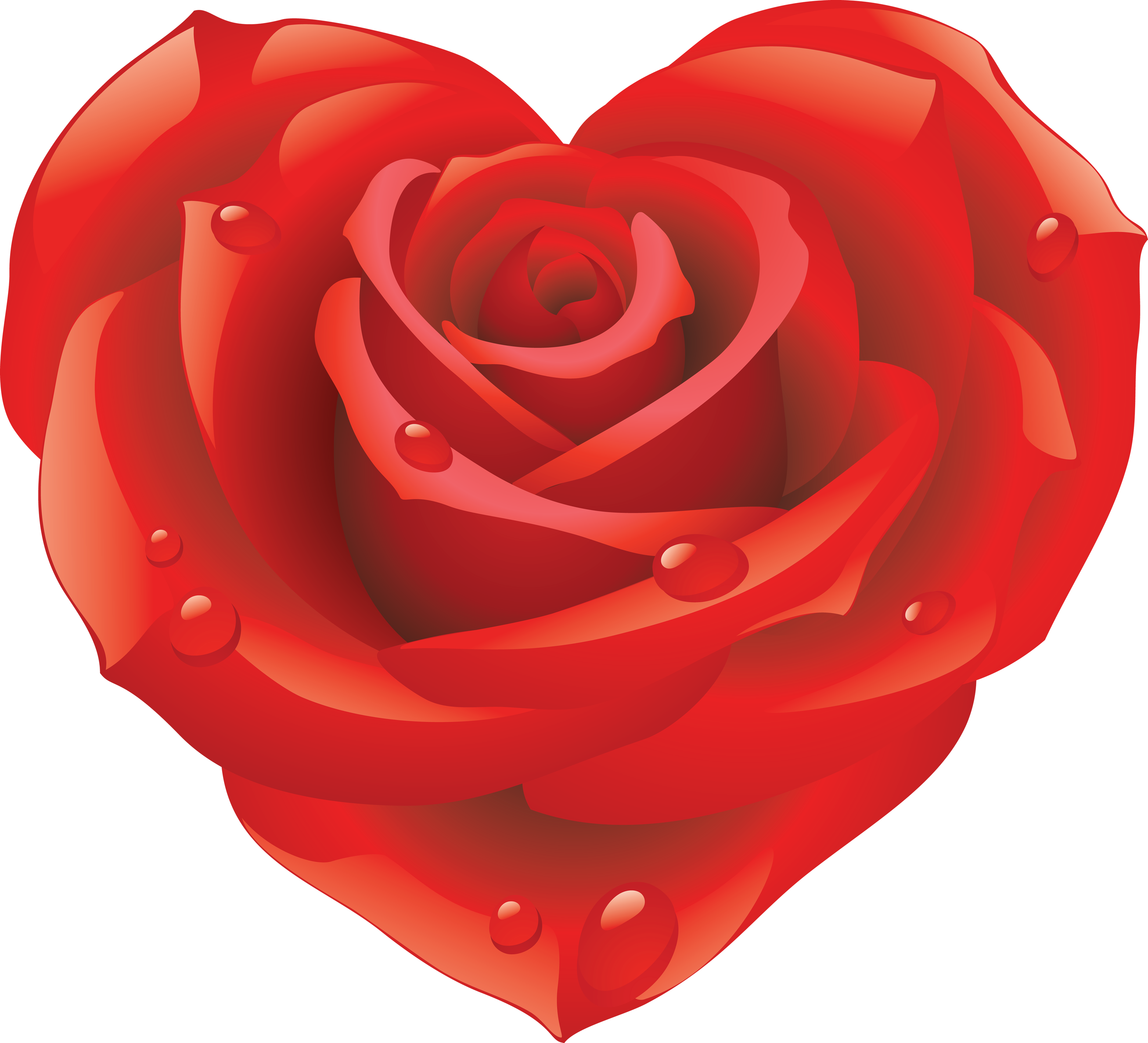 Rose image qygjxz . Hearts clipart pulse