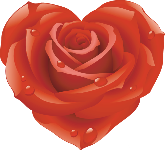 Hearts clipart watermelon. Love pinterest blooming rose