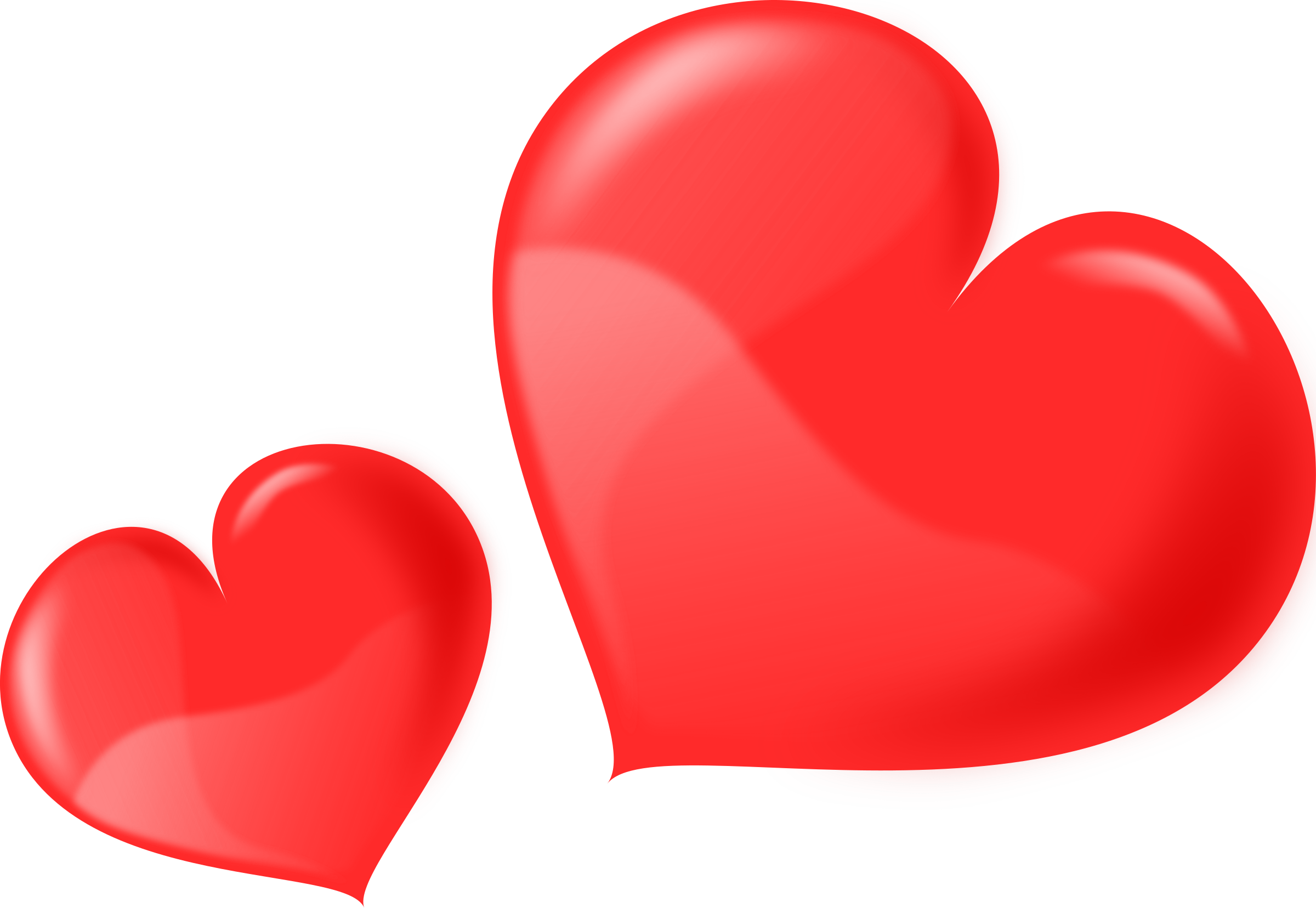 Heart glossy two icons. Hearts vector png